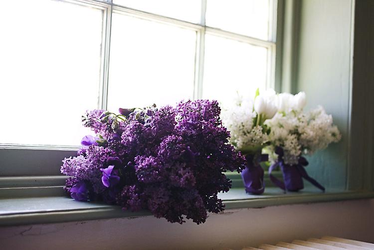 purpleboqead
