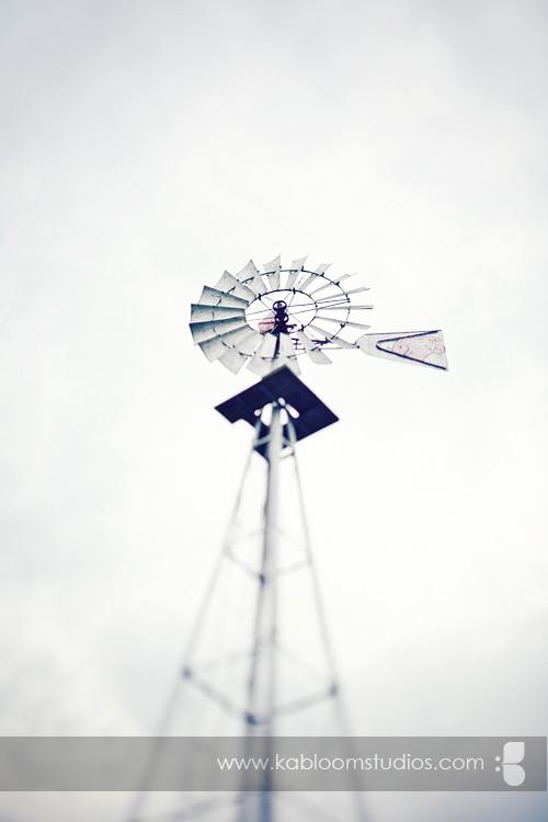 cpweddingwindmill